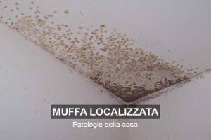 Patologie della casa: Muffa localizzata